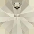 # 6401 - 12mm Swarovski Octagon Pendant - Silver Shade